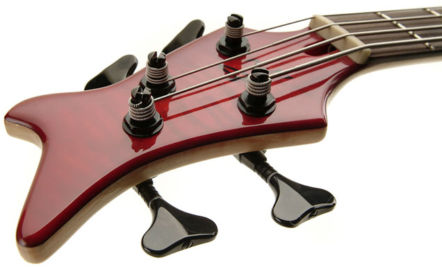 BassGuitars.us teaches about bass guitars, including acoustic bass and